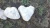 Kameno srce