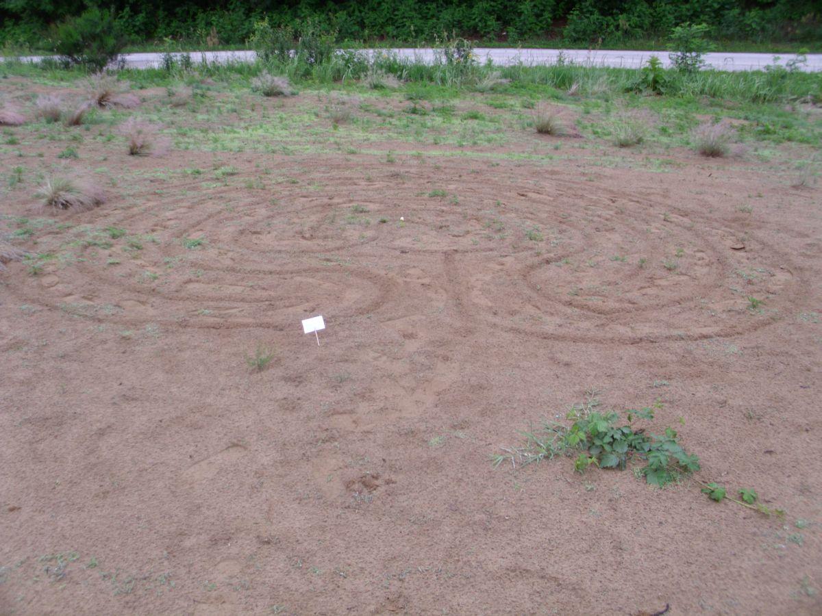 10-mali-ganesov-labirint