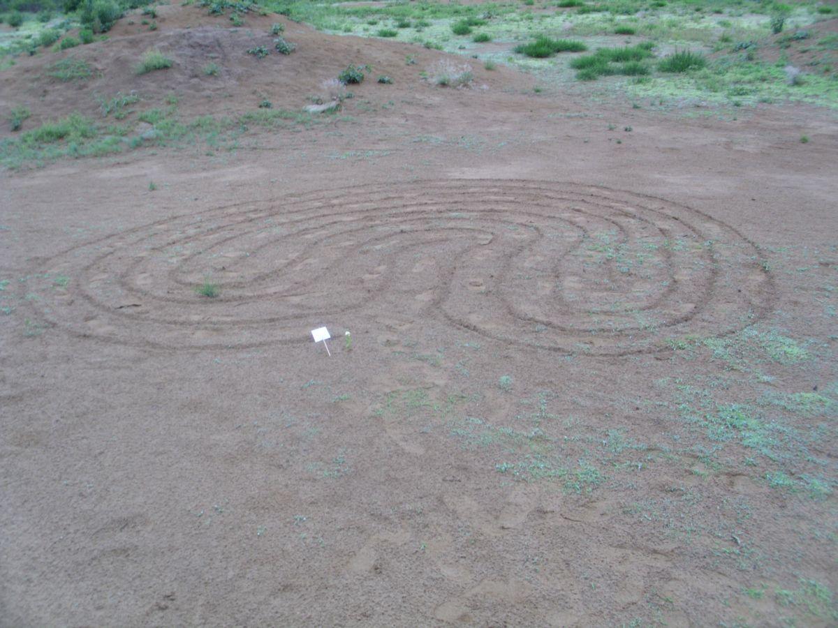 8-labirint-preobrazbe