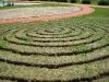 Pripremljeni labirint