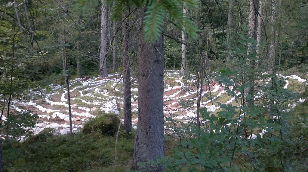5-labirint-zivota-i-smrti