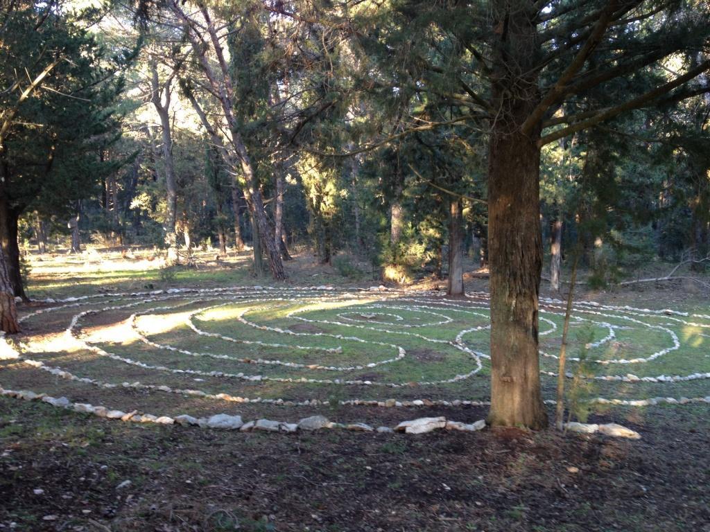 labirint6
