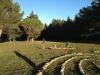 labirint4